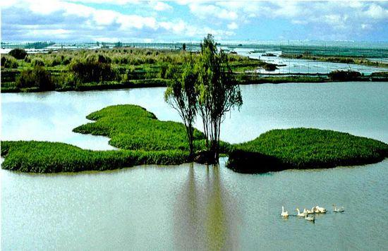 白马湖渔村_白马湖生态渔村_金湖网--带您走进金湖,了解金湖,发现金湖!